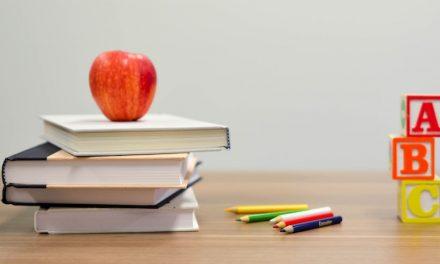 Connessioni e scuola : ci sta o non ci sta?